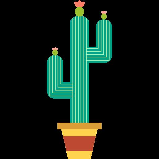 Kaktusz Info